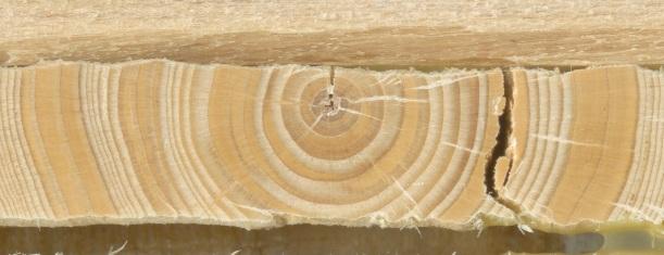 Rxn wood
